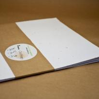 А4, белая бумага с семенами цветов